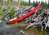 Yukon Canoe Adventure