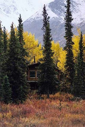 Kluane Park Cabin Cabin in Fall