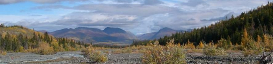 Yukon Mountain View